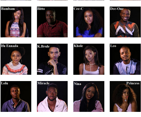 BBN 2018 Housemates Names and States (Biography) Age, Photos