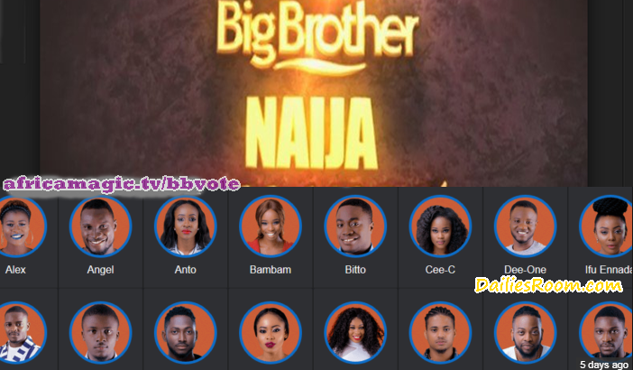 2018 BBNaija Voting Via Web | www.africamagic.tv/bbvote for Housemates