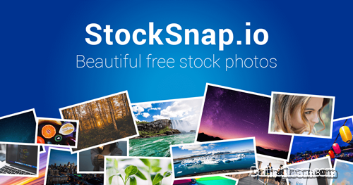 Steps To Stocksnap Registration: Free Stock Photos Sign Up